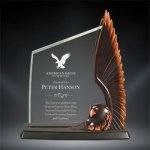 Acrylic & Resin Eagle Eagle Trophy Awards