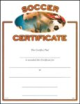 Soccer Certificate Award Fill in the Blank Certificates