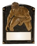 Legends of Fame Award -Wrestling  Legends of Fame Resin Trophy Awards