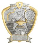 Signature Series Knowledge Shield Award Scholastic Trophy Awards